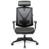 INTEY Bürostuhl mit verstellbare Kopfstütze und Armlehnen Höhenverstellung und Wippfunktion